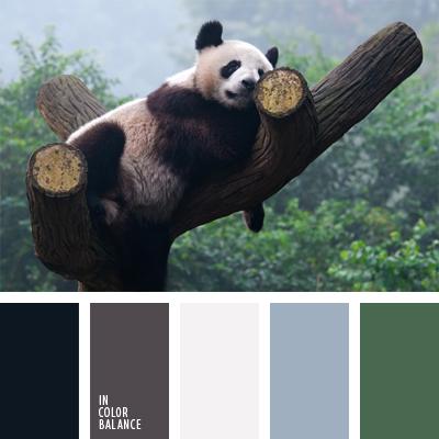 Цветовая палитра №910