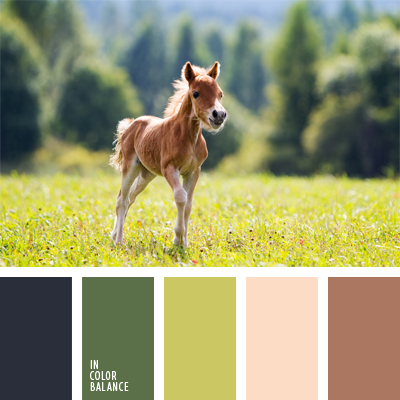 Цветовая палитра №914