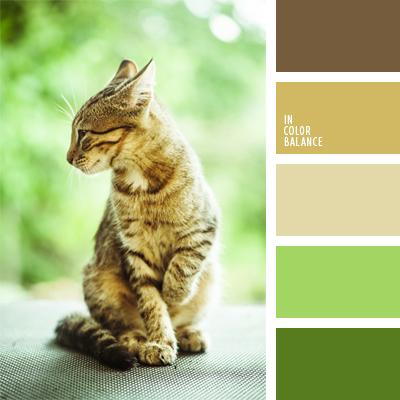 Цветовая палитра №924