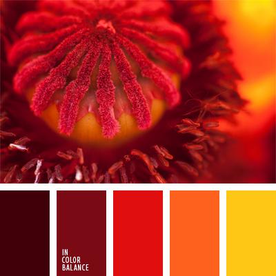 Цветовая палитра №988