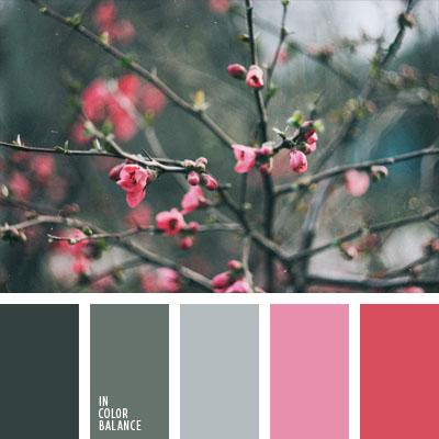 Цветовая палитра №1024