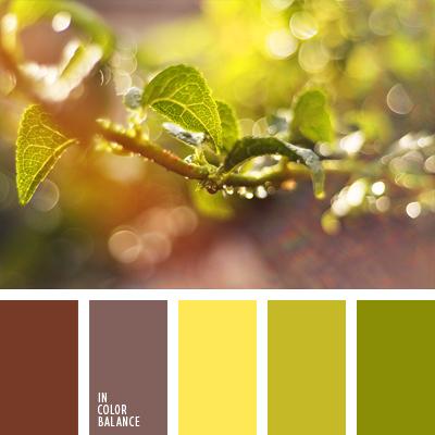 Цветовая палитра №1025