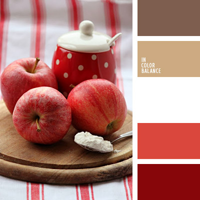 color palette from In Color Balance