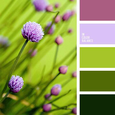Цветовая палитра №1075
