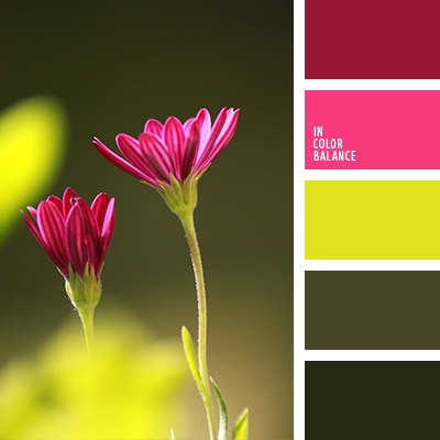 Цветовая палитра №1080