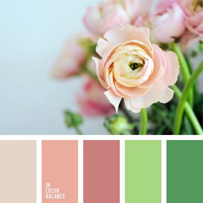 Цветовая палитра №1096