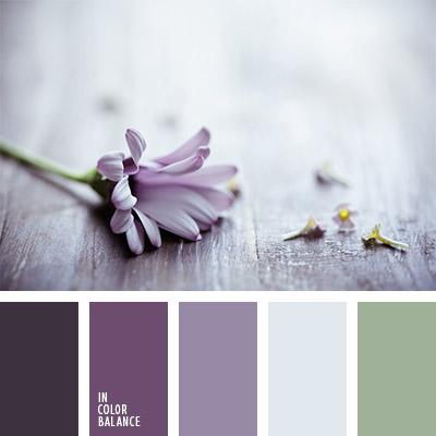 Цветовая палитра №1146