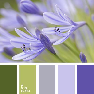 Цветы василькового цвета