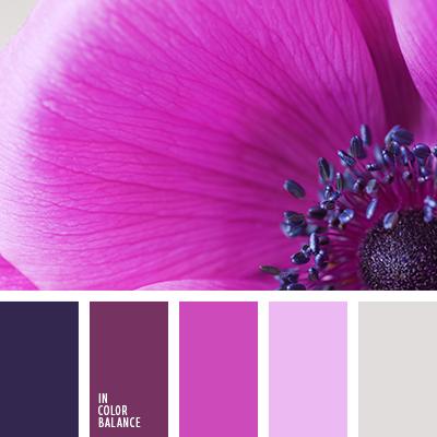 Цвет лилово розовый