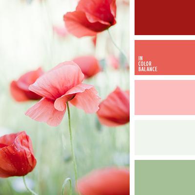 Цветовая палитра №1580