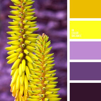 Цветовая палитра №2052