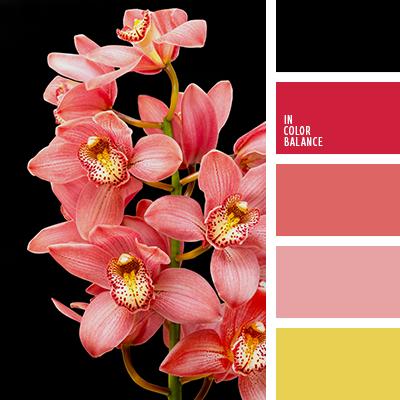 Цветовая палитра №2070