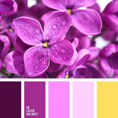 Цветовая палитра №2348
