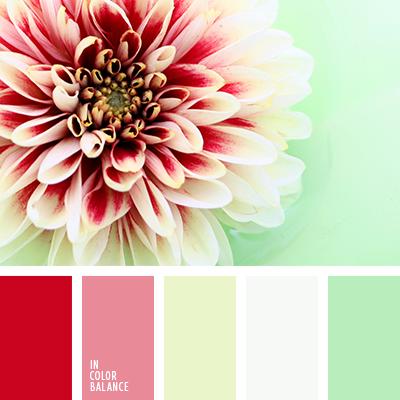 Цветовая палитра №2369