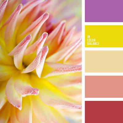 Цветовая палитра №2408