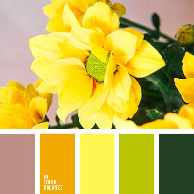 Цветовая палитра №2469