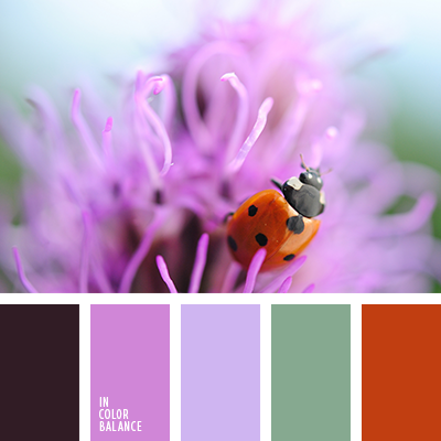 Цветовая палитра №2581
