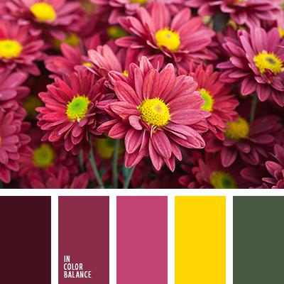 Цветовая палитра №2597