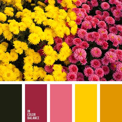 Цветовая палитра №2668