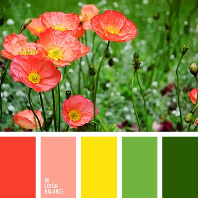 Цветовая палитра №2675