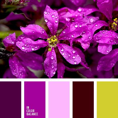 Цветовая палитра №2698