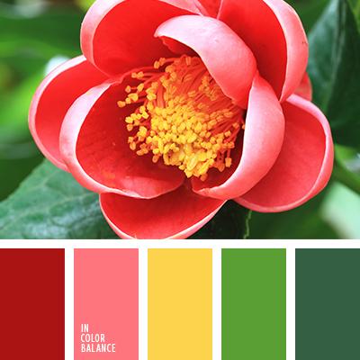 Цветовая палитра №2734