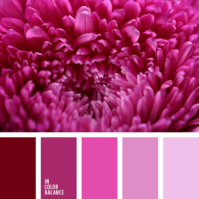 Цветовая палитра №2851