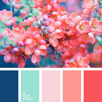Цветовая палитра №2856