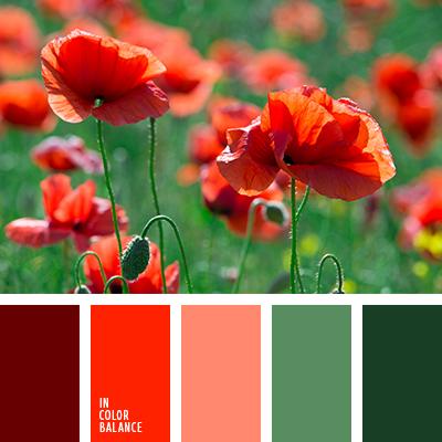 Цветовая палитра №2878