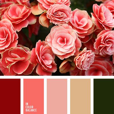 Цветовая палитра №3036