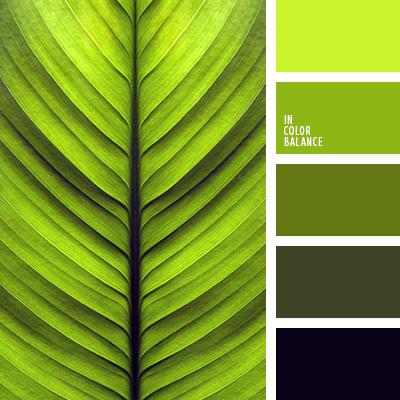 Цветовая палитра №3242