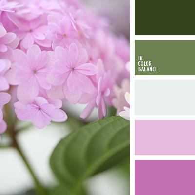 Цветовая палитра №3248
