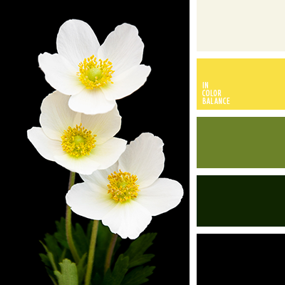Цветовая палитра №3257