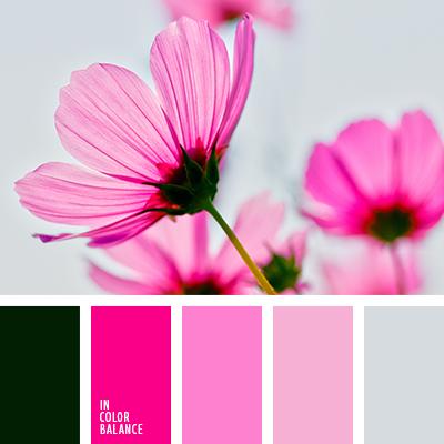 Цветовая палитра №3404