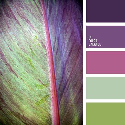 Цветовая палитра №3493