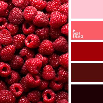 Цветовая палитра №3555