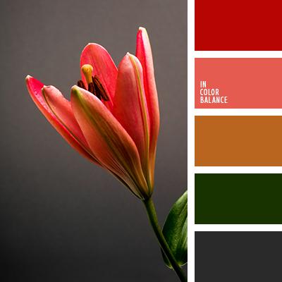 Цветовая палитра №3556