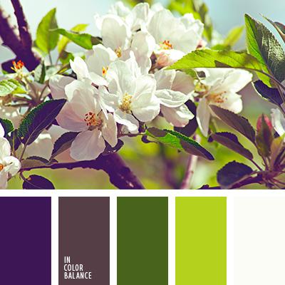 Цветовая палитра №3851