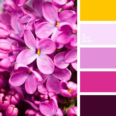Цветовая палитра №3894