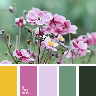 Цветовая палитра №3898