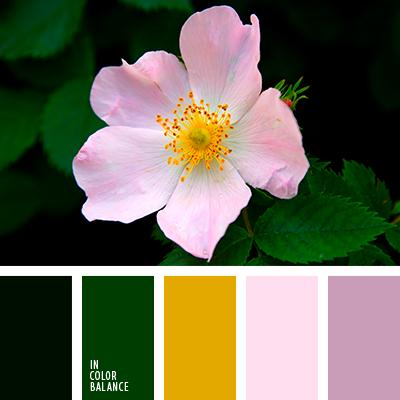 Цветовая палитра №3922