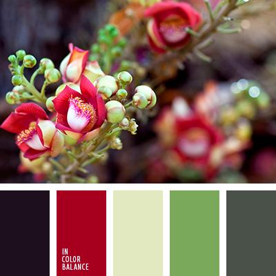 Цветовая палитра №3925