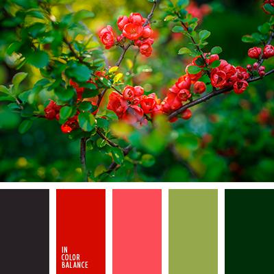 Цветовая палитра №3994