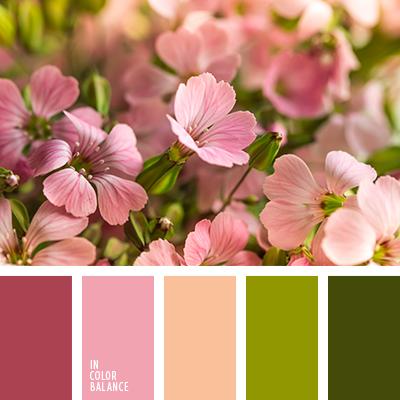 Цветовая палитра №3996