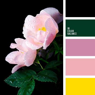 Цветовая палитра №4000