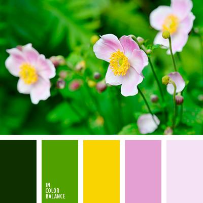 Цветовая палитра №4019