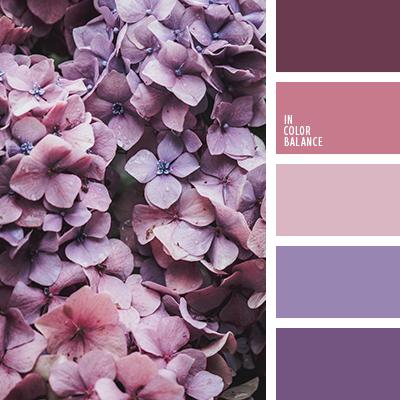 Цветовая палитра №4249